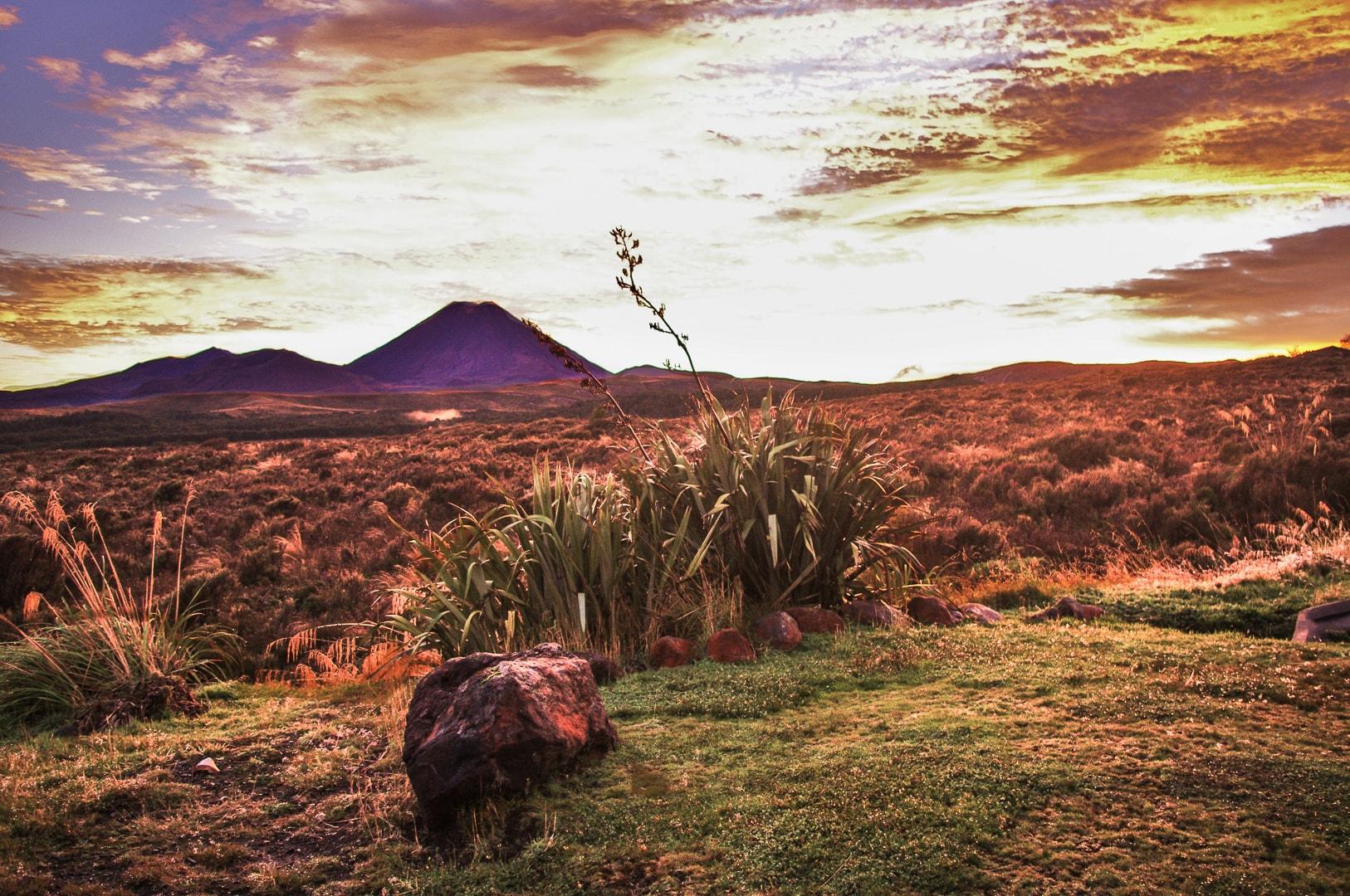 trezors-photography-photographe-professionnel-toulouse-31-voyage-paysage-new-zealand.jpg (4)
